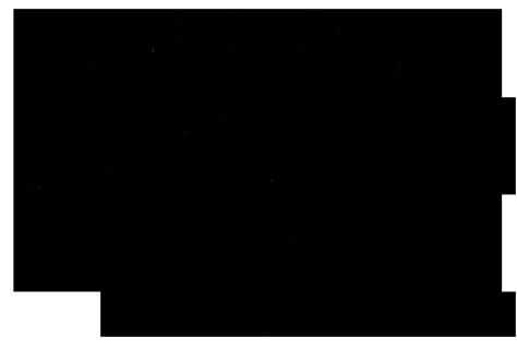 AAF-NUOVO-LOGONERO-4